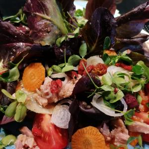 Büffet Catering Leipzig Salat Vorspeisen